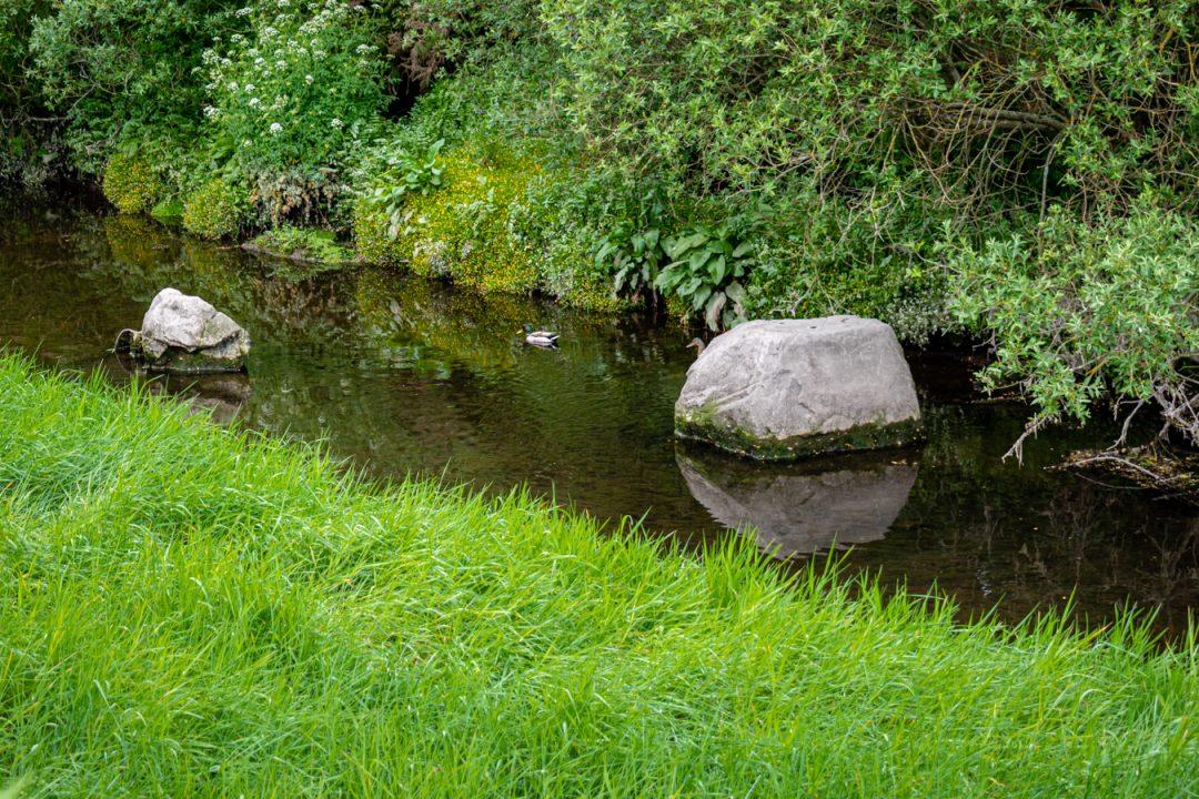 The Tramore River Cork