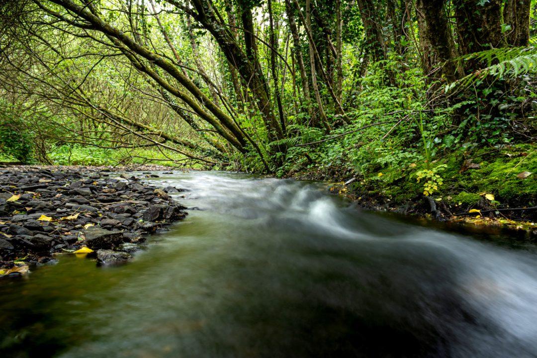 Tramore Valley Park Walk Cork Landscaping by Pavilion Landscapes